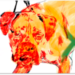 Animal Control - Detail